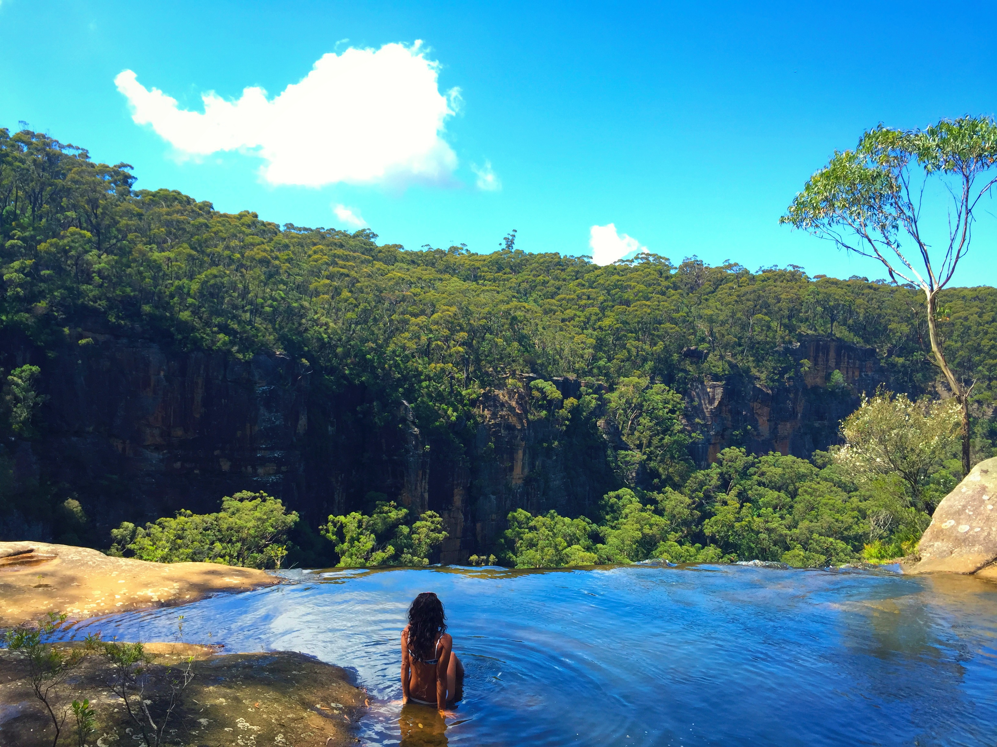 how to get to fitzroy falls